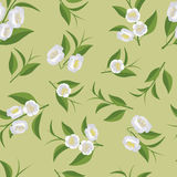 Ein wiederholendes Muster von Blumen und von grünen Teeblättern Lizenzfreie Stockbilder