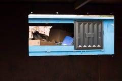 Ein Wiederverwertungsbehälter voll des Plastiks und der Kästen Stockfotografie