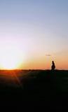 Ein wildes Pferd auf einem Hügelsonnenuntergang lizenzfreie stockfotografie