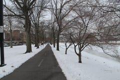 Ein Winter-Morgen Stockfotografie