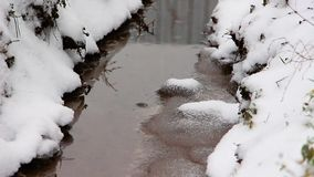 Ein Wintertag, Schnee fällt auf einen kleinen Strom, das Gras zögert stock video