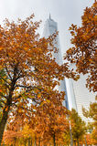 Ein World Trade Center im Herbst Stockbild