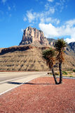 Ein Yucca auf der Datenbahn zu den Guadalupe-Bergen lizenzfreies stockbild