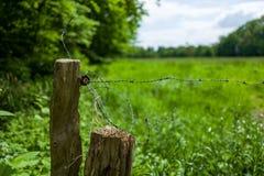 Ein Zaun im Altengroden-Park in Wilhelmshaven, Deutschland Lizenzfreie Stockfotos