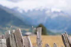 Ein Zaun und ein Bergblick - Mestia, Georgia Lizenzfreie Stockbilder