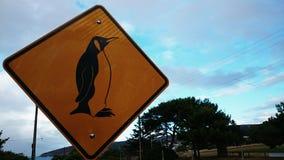 Ein Zeichen des Pinguins Stockbild