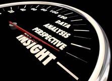 Einblick-Analyse-Informations-Daten-Perspektiven-Geschwindigkeitsmesser lizenzfreie abbildung