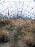 Einblick in eine verlassene Gartenarbeit Stockbild