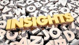 Einblick-Ergebnis-Intelligenz-Wort-Buchstaben lizenzfreie abbildung