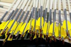 Eind van de pijlen van het sportboogschieten in rij Royalty-vrije Stock Fotografie