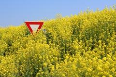 Einde GMO royalty-vrije stock foto's