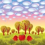 Eindeloos landschap met appelen in gras Stock Fotografie