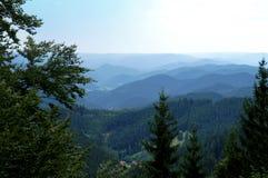 Eindeloze breedten in het Zwarte Bos, Duitsland Royalty-vrije Stock Foto's