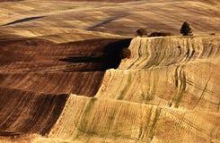 Eindeloze Heuvelgebieden Stock Afbeeldingen