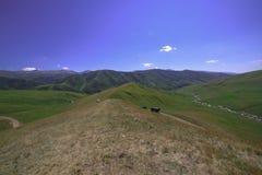 Eindeloze heuvels Blauwe hemel rust stock foto's