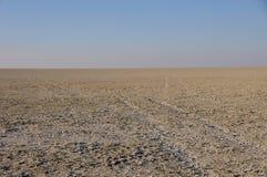 Eindeloze horizonnen in de Zoute Pannen van Etosha in Namibië royalty-vrije stock fotografie