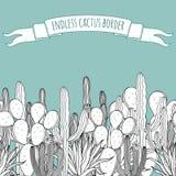 Eindeloze succulente cactusgrens Stock Foto