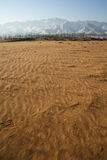 Eindeloze woestijn Stock Foto's