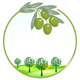 Eindeutige Landschaft der Oliven lizenzfreie abbildung