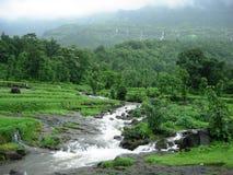 Eindeutige Monsun-Landschaft Lizenzfreies Stockbild