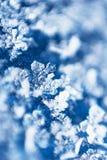 Eindeutige Schneeflocke auf blauem Samtdetailmakrohintergrund Stockfoto