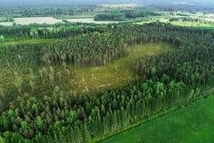 Eindeutiger Bereich in Estland lizenzfreie stockfotografie