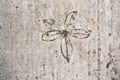 Eindruck von Blättern im Beton stockbilder