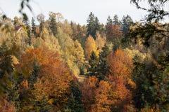 Eindruck von Herbstfarben Stockbild