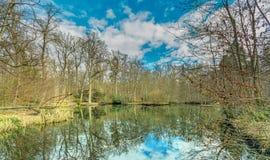 Eindrucksvolle Farben in einem Teich Stockbild