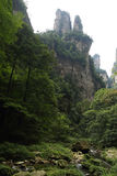 Eindrucksvolle Gebirgsnadeln in Nationalpark Zhangjiajie Lizenzfreie Stockfotografie