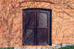 Eine alte Backsteinmauer und eine hölzerne geschlossene Tür umgeben durch blattloses Lizenzfreie Stockfotos