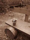 Eine alte Bank mit einem kleinen Blumenpotentiometer Stockfoto