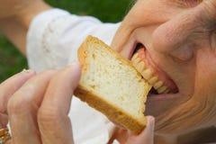 Eine alte Frau, die einen Toast beißt Lizenzfreie Stockfotografie