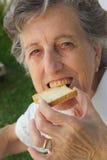 Eine alte Frau, die einen Toast beißt Stockbilder