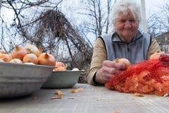 Eine alte Frau mit dem grauen Haar hebt Zwiebeln auf, bevor sie in der Küche, organisches Gemüse, ihre eigene Ernte kocht lizenzfreie stockfotografie