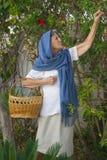 Eine alte Frau wählt die Blumen aus Lizenzfreie Stockfotografie