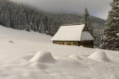 Eine alte Hütte in der Rusinowa-Lichtung Tatra Berge polen Stockbilder