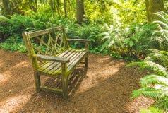 Eine alte Holzbank im schönen botanischen Garten mit Sonnenlichtschatten und Schatten in der Tageszeit Lizenzfreie Stockfotografie