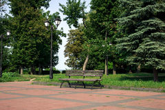 Eine alte Holzbank im Sommerpark Lizenzfreies Stockfoto