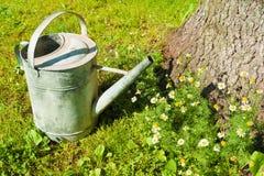 Eine alte metallische Gießkanne, die auf dem Rasen steht Stockbilder