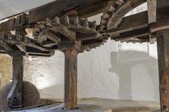 Eine alte olivgrüne Mühle in Nord-Korsika Stockfotografie