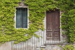 Eine alte Steinwand mit einer Tür, Treppe, Fenster, überwältigt mit Efeu Italienisches Dorf Stockbilder