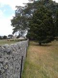 Eine alte Steinwand zwischen zwei Feldern Lizenzfreie Stockfotografie