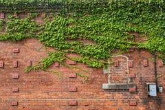 Eine alte Wand des roten Backsteins Lizenzfreies Stockbild