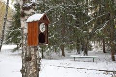 Eine alte Wanduhr mit Kuckuck als Vogelhaus im Winterpark Lizenzfreies Stockfoto