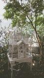 Eine alte weiße Schlossverzierung mit Baum lizenzfreie stockbilder