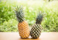 Eine Ananas auf hölzernem mit grünem natürlichem Hintergrund Lizenzfreies Stockbild