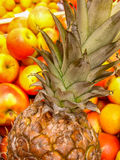Eine Ananas unter Äpfeln lizenzfreies stockfoto