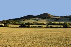 Eine andere Ansicht des geteilten Ackerlandes Lizenzfreies Stockfoto