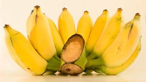 Eine angebaute Banane Stockbilder